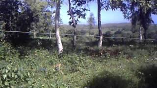 Fazenda Nguluzane - Vista Verde Moçambique Xai Xai