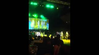 Australian military drill. Performed at the 2014 charity ball.