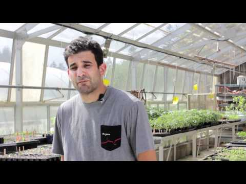 Growing growers at UBC Farm