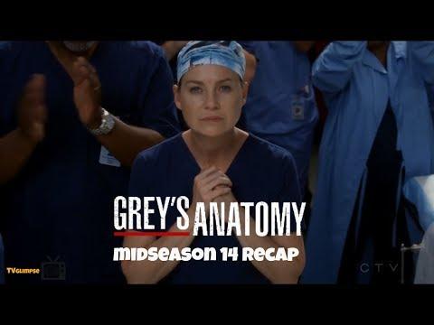 Grey's Anatomy Mid-Season 14 Recap