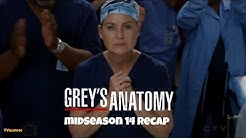 Grey's Anatomy Mid-Season 14 Recap