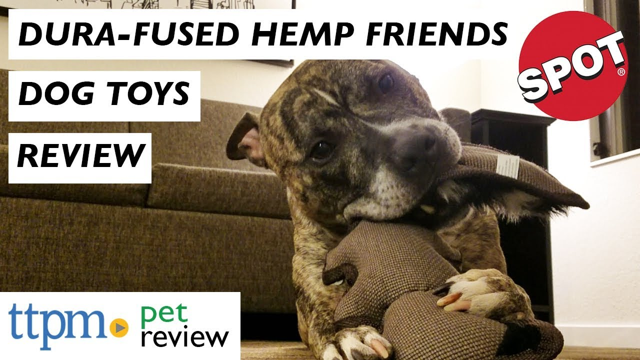 Burlapper Dog Plush and Hemp Dog Toy