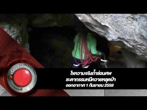ไขความจริงถ้ำซ่อนศพ+ชะตากรรมหมีควายหลุดป่า l เรื่องจริงผ่านจอ ออกอากาศ 1 กันยายน 2559