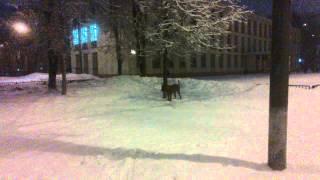 Хуч и снежинки.mp4