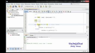 Tutorial Basico de Java - Parte II
