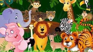 Мультфильмы про животных для детей. СБОРНИК ЛУЧШИХ  мультфильмов