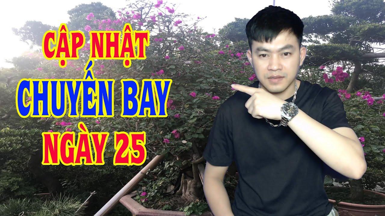 Xklđ Đài Loan | Cập Nhật Chuyến Bay Đón Lao Động Việt Nam Tại Đài Loan Về Nước | Đài Việt Vlog