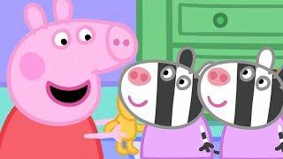 Peppa Pig en Español 🎁 Zaza y Zuzu! | 1 Hora | Dibujos Animados