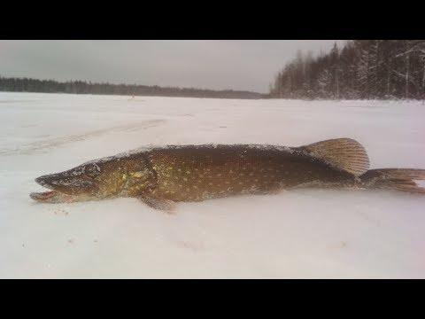 Рыбалка на озере 2-3 декабря 2017