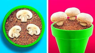 Surprising Plant Growing Hacks and Gadgets