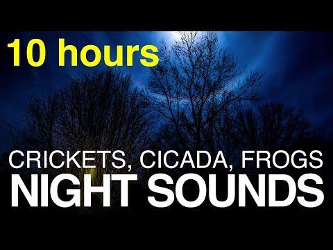 (10 HOURS) Sleep Sounds, Crickets, Frogs, Cicadas at Night --- Dark Black Screen