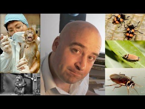 Vegans Kill Cockroaches (Vivisection, Agriculture & Activism)