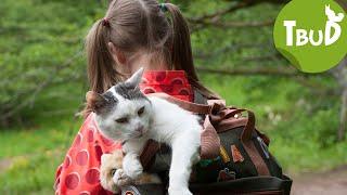 Katze in Not (Folge 87) | Tiere bis unters Dach | SWR Kindernetz