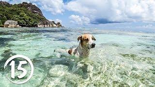 Остров Ла Диг, Сейшелы. Самый фотографируемый пляж в мире