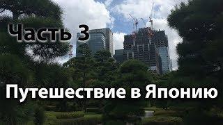 Путешествие в Японию - Часть 3 (Поездка в пригород Токио, Императорский сад) / Видео