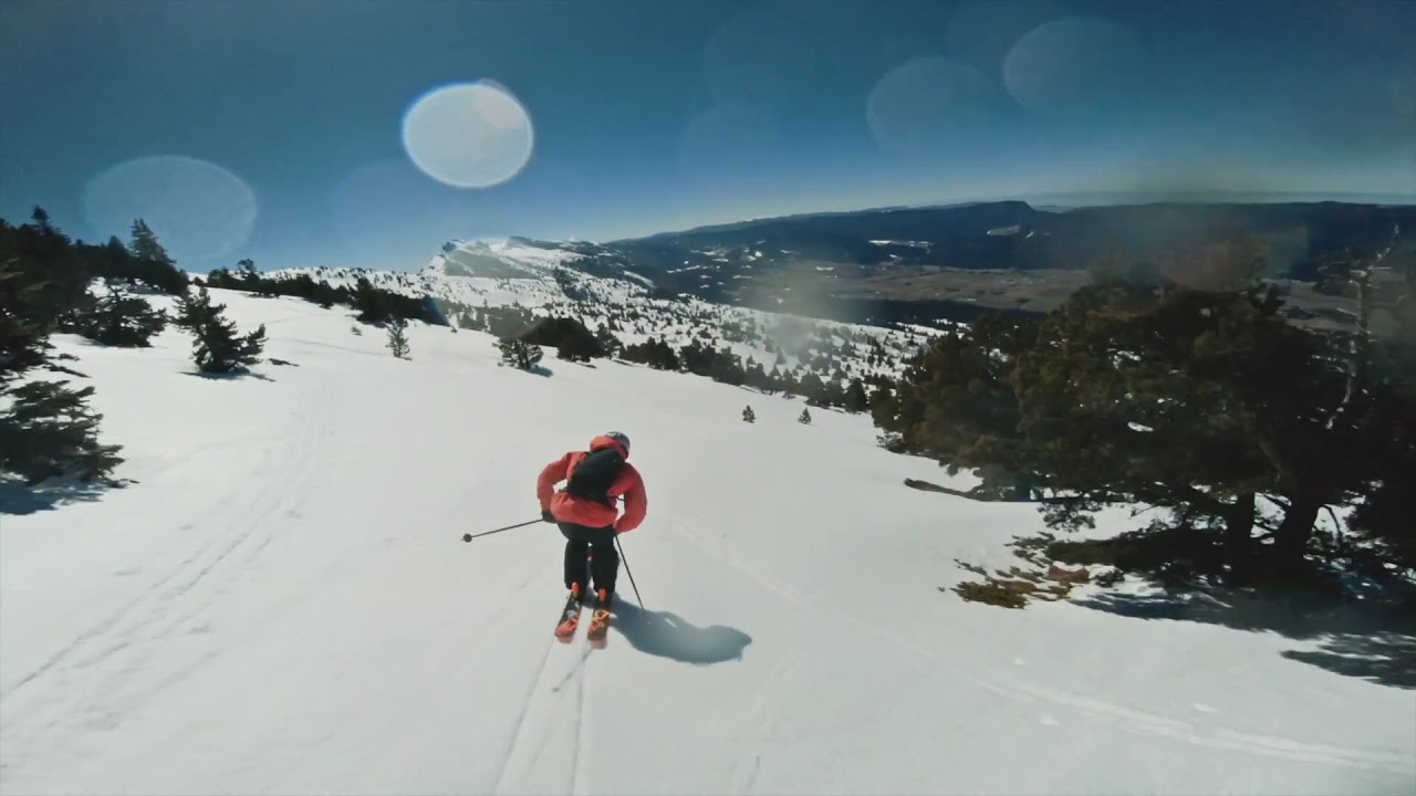 Fastwood Fpv by Richard Permin - High Speed Free Skiing vs Drone Fpv фото