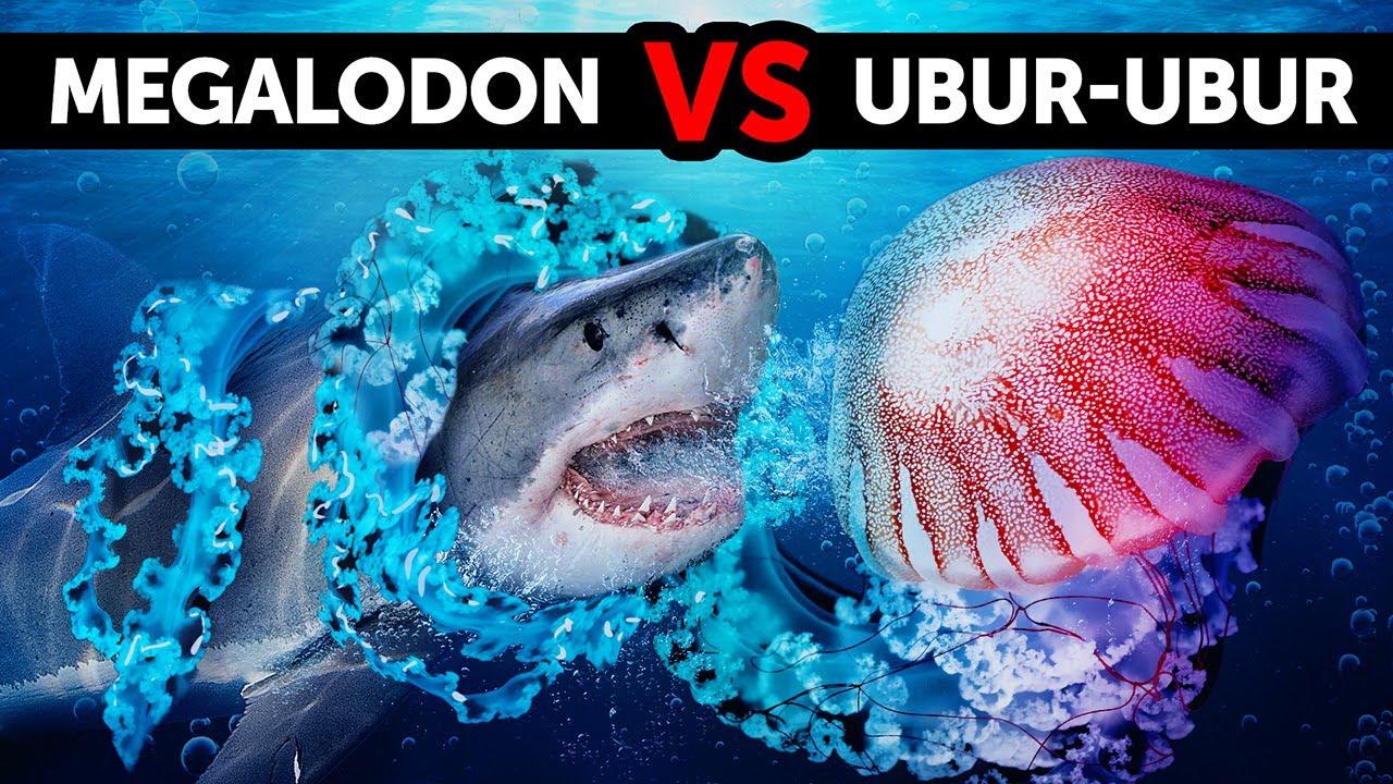 Download 40+ Fakta Makhluk Laut Dalam yang Lebih Mengerikan daripada Megalodon