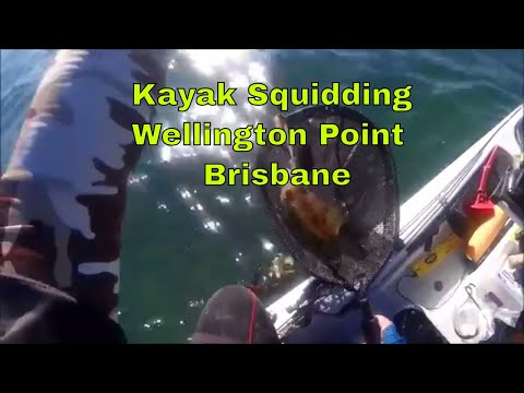 Kayak Squidding, Wellington Point,Brisbane, Australia
