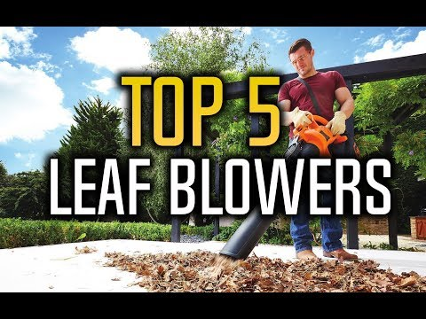 ▶️ Best Leaf Blowers & Leaf Vacuums In 2017