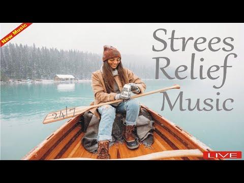Relaxing Sleep Music 24/7 Calming Music, Meditation Music, Spa Sleeping Music, Relaxing Music, Sleep