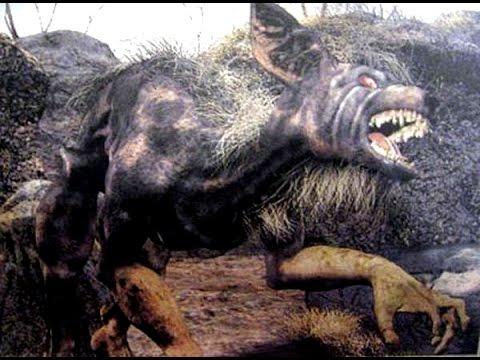 Los Nahuales Personas Que Se Pueden Convertir En Animales Youtube