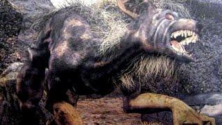 Los Nahuales : personas que se pueden convertir en animales