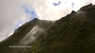 La montagne Pelée