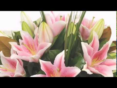 Cắm hoa với hoa ly, Hoa ly tet 2014, hoa ly đà lạt - LH: 01227678848