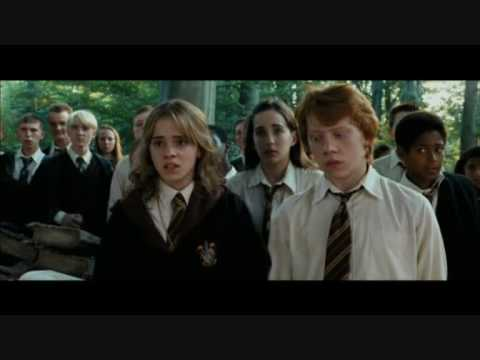 do ron and hermione dating in real life