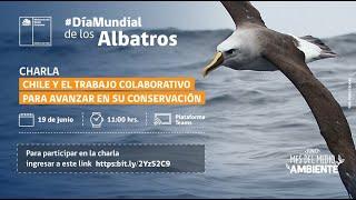 Día Mundial de los Albatros