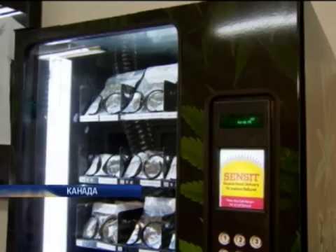 Автомат по продаже марихуаны осень конопли