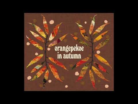 STORY with OP's in autumn ver. - orange pekoe