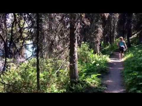 Hiking the Swiftcurrent Nature Trail, Many Glacier, Glacier National Park, Montana