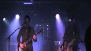 Amplifier - The Octopus