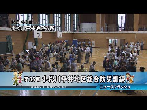第35回 小松川平井地区総合防災訓練