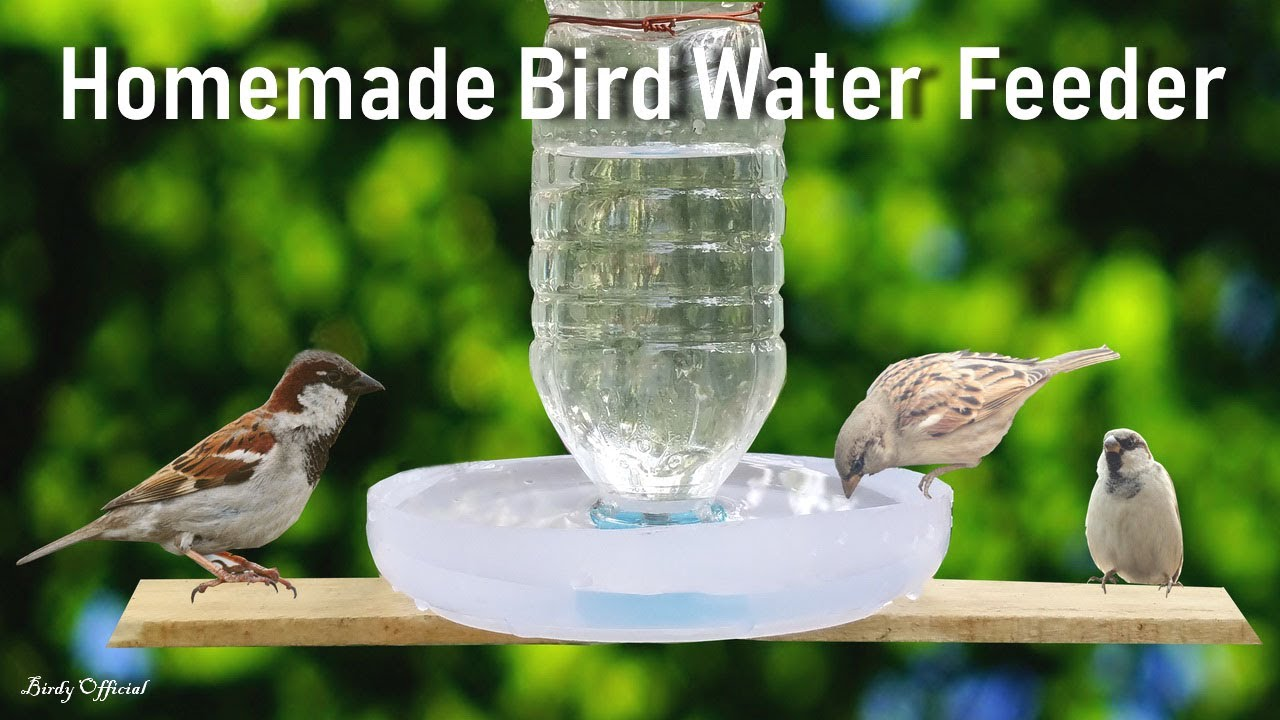 How To Make A Bird Water Feeder Diy Homemade Plastic Bottle Bird
