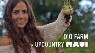 Things to Do in Maui - Upcountry Farm to Table at O'O Farm