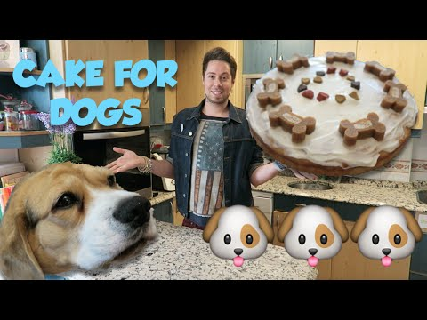 CAKE FOR DOGS 🐶