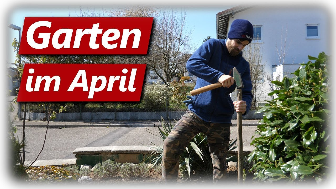 Gartenarbeit April Beet Anlegen Rasenkante Abstechen Bienen Kaki Youtube - Gartenarbeit April