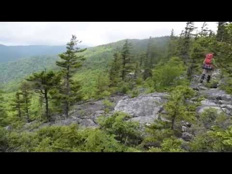 Let's backpack Roaring Plains Wilderness! Monongahela National Forest West Virginia