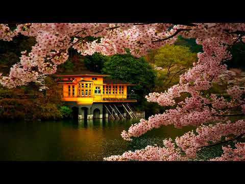 Zen Meditation Music | Japanese Flute Music | Relax, Meditation, Sleep, Ambience