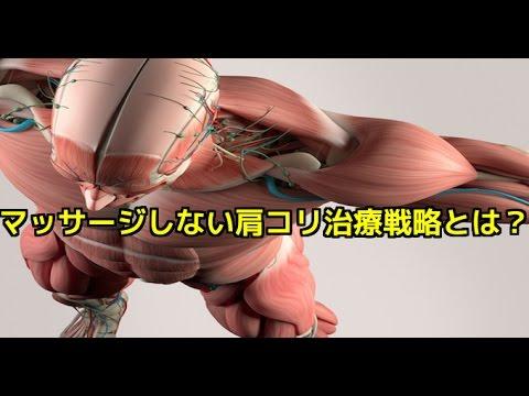 筋膜はがし 筋膜リリース マッサージしない肩こり治療戦略とは? - YouTube
