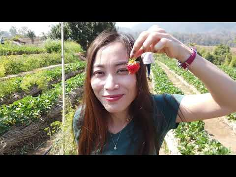 "ISSAN ""Loei"" Most beautiful places I seen - Part 3 - V#129"