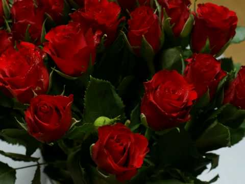 Wayne Newton  Red Roses For A Blue Lady