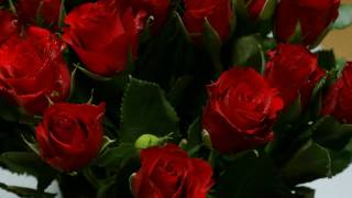 Watch Wayne Newton Red Roses For A Blue Lady video