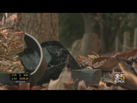 Three Teens Killed, Two Injured In Horrific Pleasanton Crash On Christmas Night