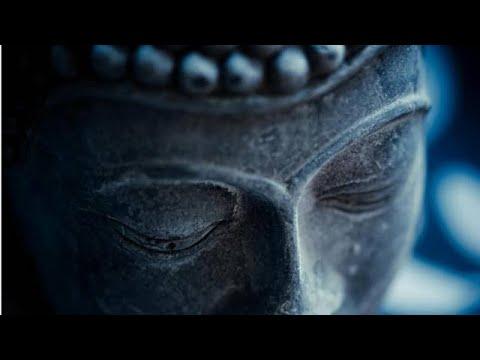 Méditation Évolutive: Cours particuliers