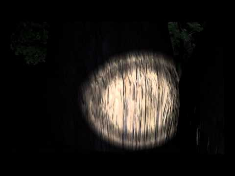 Slender Gameplay and Commentary