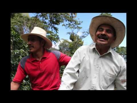 Tuli Interviews Benjamin Paz Muñoz from Beneficio San Vicente in Peña Blanca, Honduras