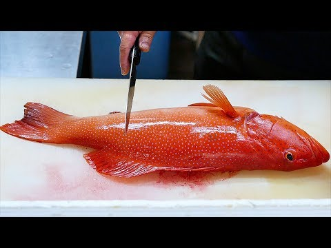 Japanese Food - RED GROUPER Steamed Fish Sashimi Okinawa Seafood Japan